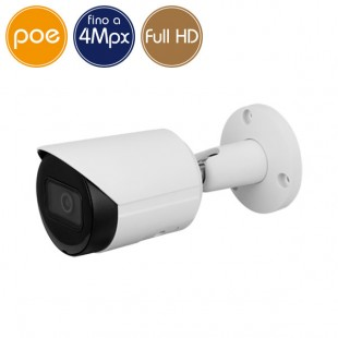 Telecamera IP PoE - 4 Megapixel / Full HD (1080p) - Ultra Low Light - IR 30m