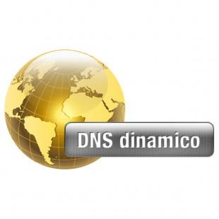 ServicePlus DDNS